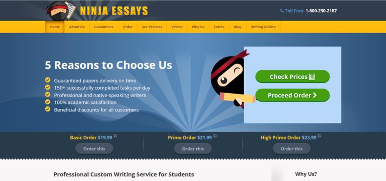 ninja essays