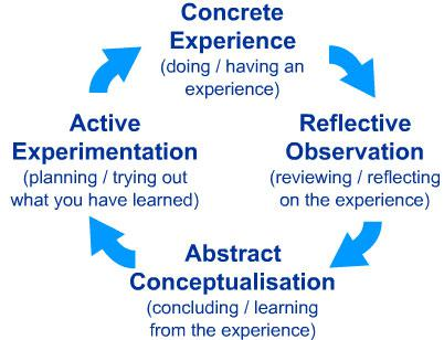 researcher's concepts and theory